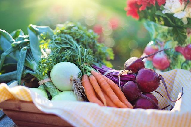 vergessen der künstlichen ernährung