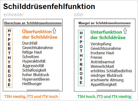 Symptome Schilddrüsenunterfunktion/Schilddrüsenüberfunktion im Vergleich